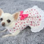 white and pink floral dog dress pink bow