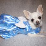 Millie in Frozen inspired dress