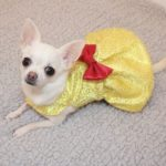 millie wearing beauty and the beast inspired yellow sprakly dress