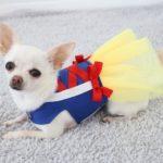 Millie wearing Snow White inspired dress