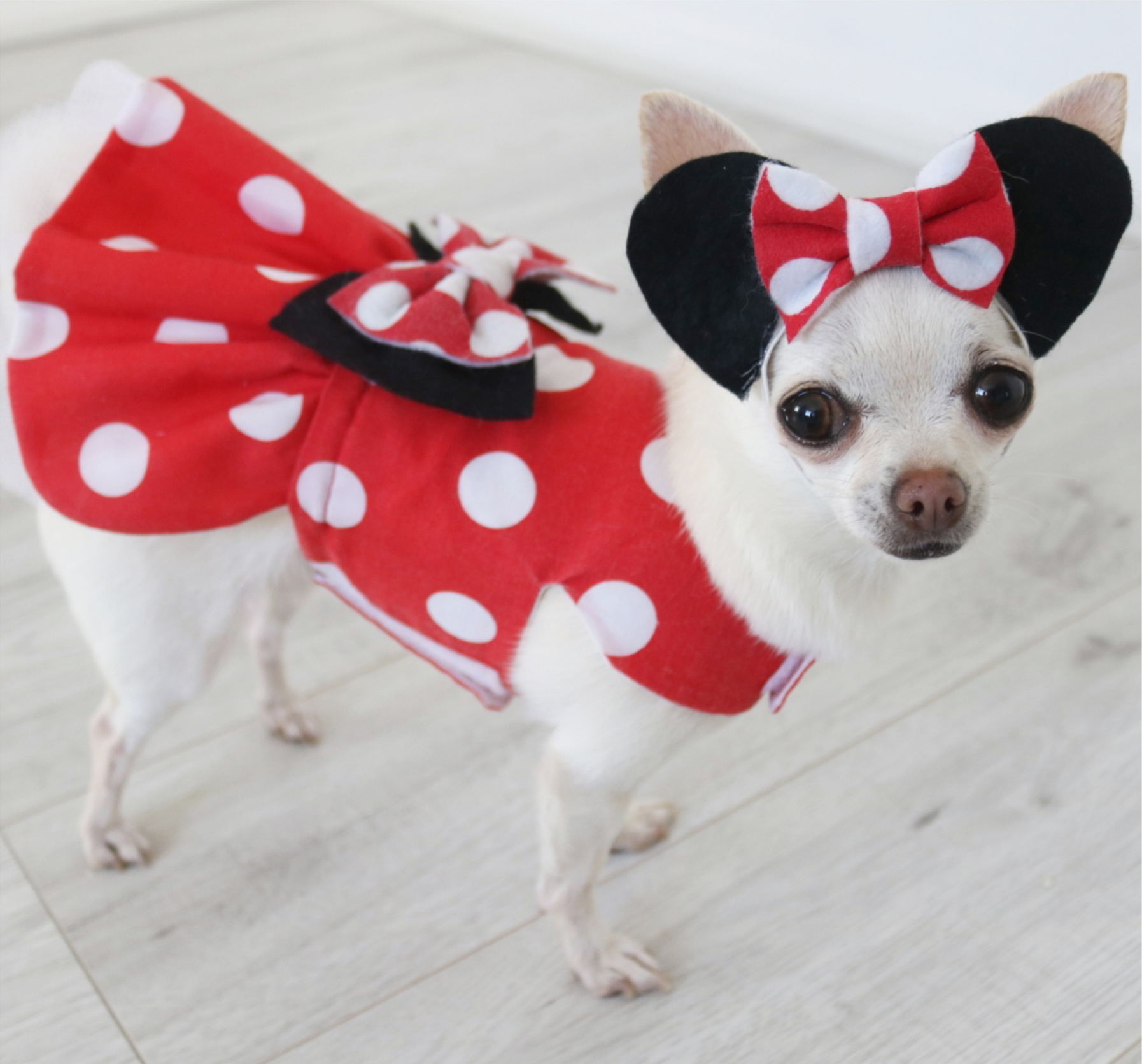 390abfa931 Minnie Mouse Inspired Red and White Polka Dot Dog Dress - Pretty ...