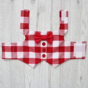 Red and white checkered dog waistcoat