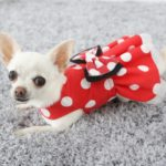 Millie Mouse in red polka dots